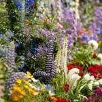 Planirate urediti dvorište? Pogledajte novitete za 2013. - LifePress magazin