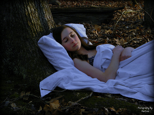 Posiciones para dormir