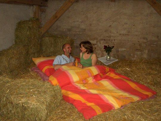 Terapija protiv stresa u krevetu od sena