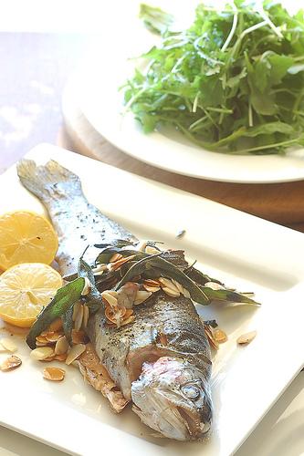 riba u trudnoći