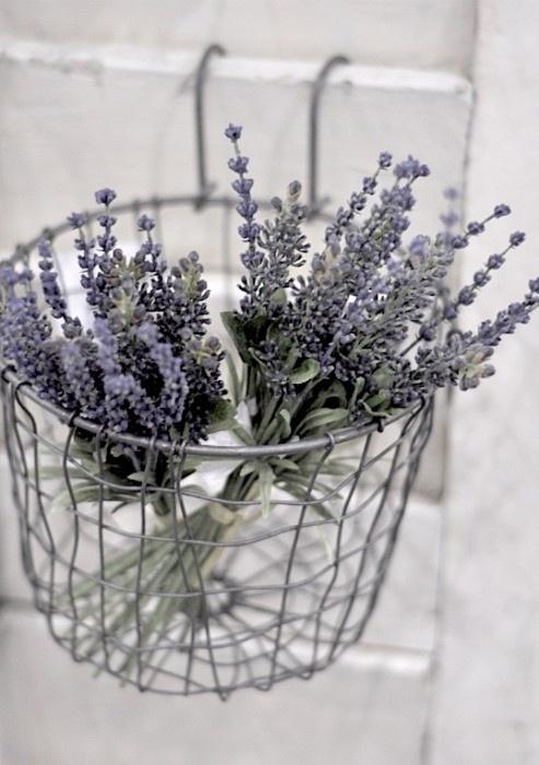 http://indulgy.com/post/ErA2HUl1B1/love-lavender