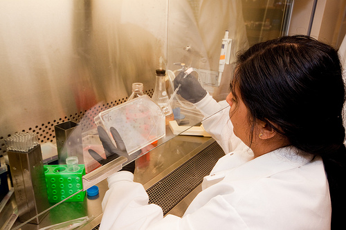 čuvanje matičnih ćelija