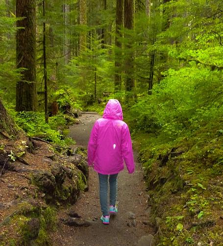 šetnje šumom