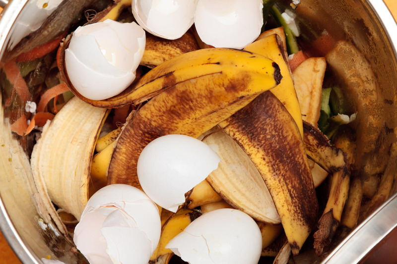 gnojivo banane jaja