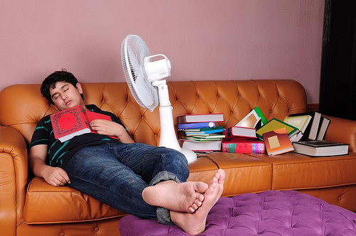 ucenje knjige spavanje
