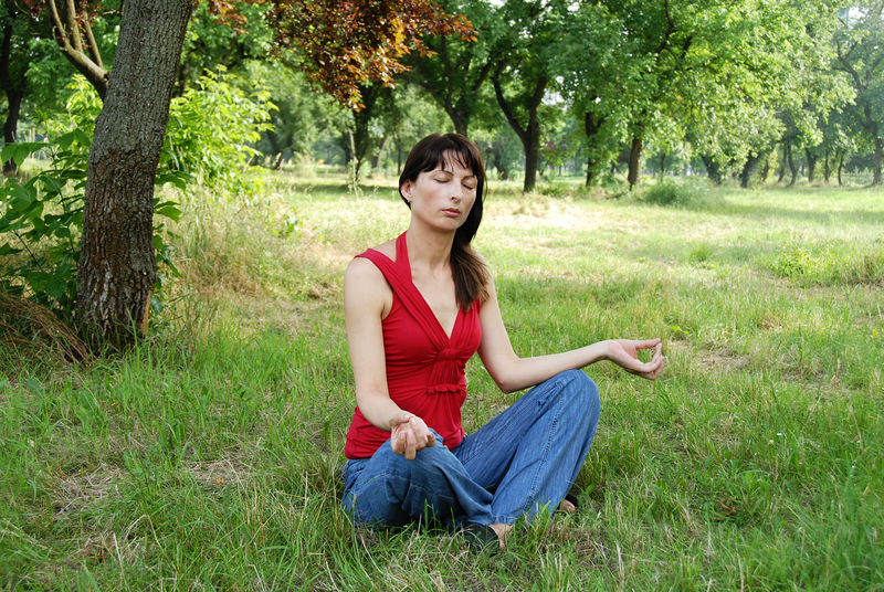 http://www.dreamstime.com/stock-photo-woman-meditation-caucasian-brunette-pose-outdoors-image33287510