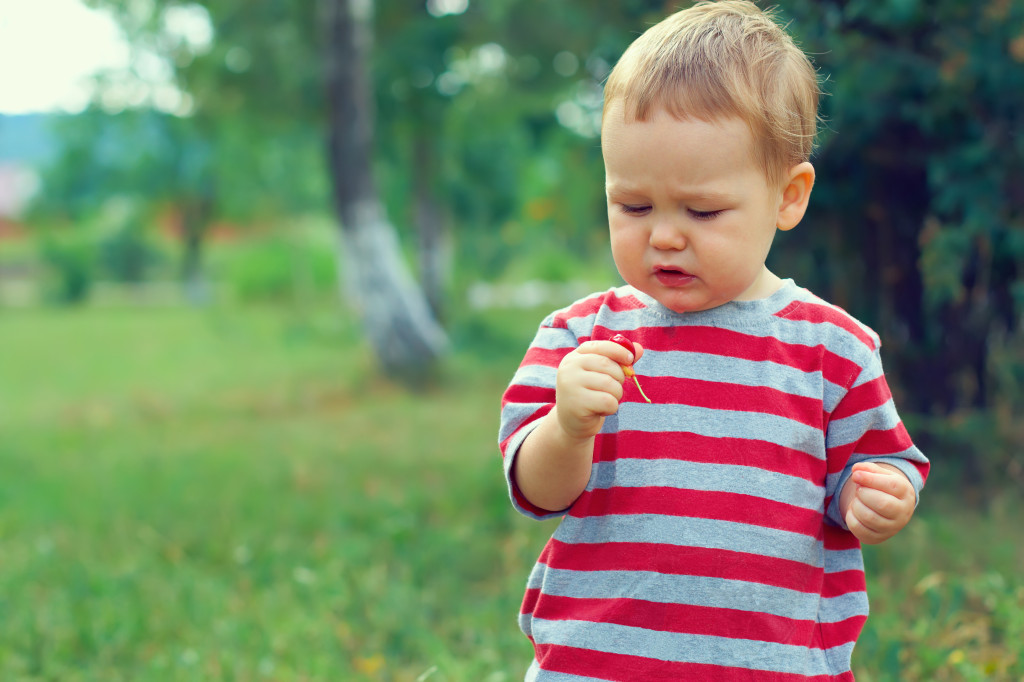 http://www.dreamstime.com/stock-images-cute-baby-boy-eating-sour-cherry-outdoor-image23811634
