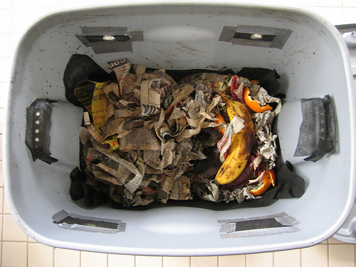kompost gliste 3