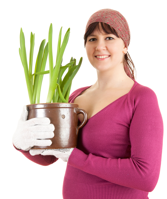 http://www.dreamstime.com/royalty-free-stock-image-pregnant-woman-plant-pot-image24602606