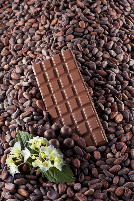 http://www.dreamstime.com/stock-photo-milk-chocolate-flower-cocoa-beans-background-image30015590
