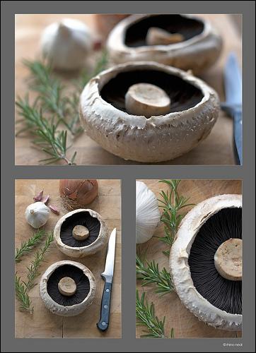 gljive sampinjoni