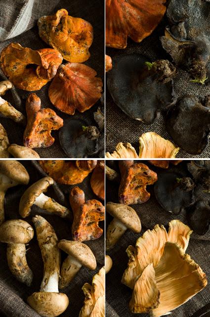 ragu od gljiva 3