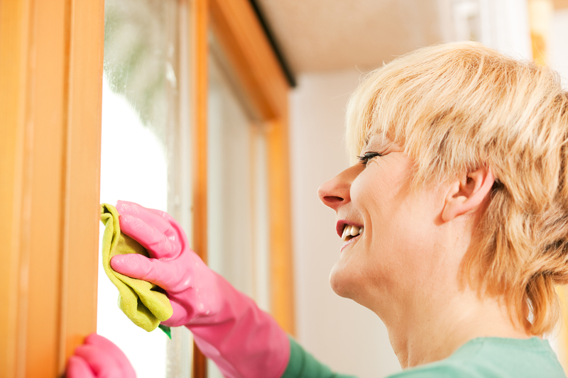 http://www.dreamstime.com/royalty-free-stock-images-housewife-cleaning-her-windows-rubber-gloves-image14670429