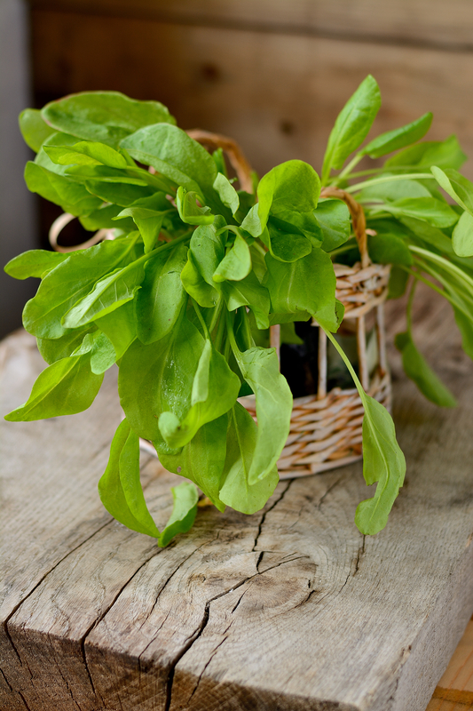 http://www.dreamstime.com/stock-photos-sorrel-leaves-basket-wooden-table-image40145393