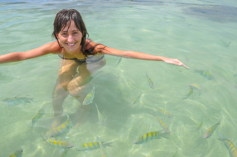 http://www.dreamstime.com/stock-photography-young-women-swimming-tropical-fish-bahia-boipeba-brazil-south-america-image41218842