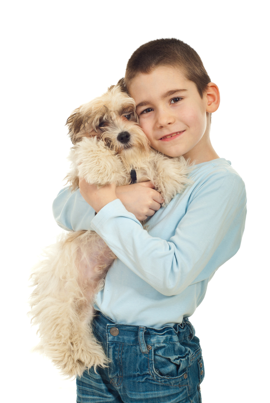 http://www.dreamstime.com/royalty-free-stock-image-happy-kid-holding-his-puppy-image18846416