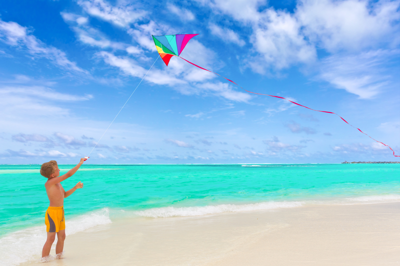 http://www.dreamstime.com/royalty-free-stock-photography-boy-flying-kite-beach-image16624877