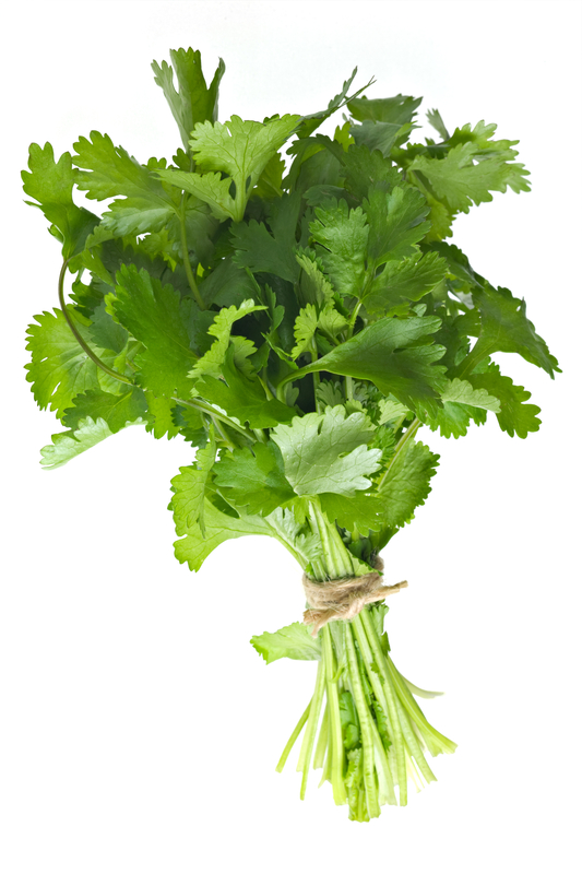 http://www.dreamstime.com/royalty-free-stock-image-coriander-bunch-image23301416