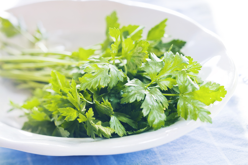 http://www.dreamstime.com/stock-image-parsley-fresh-white-plate-image33186661