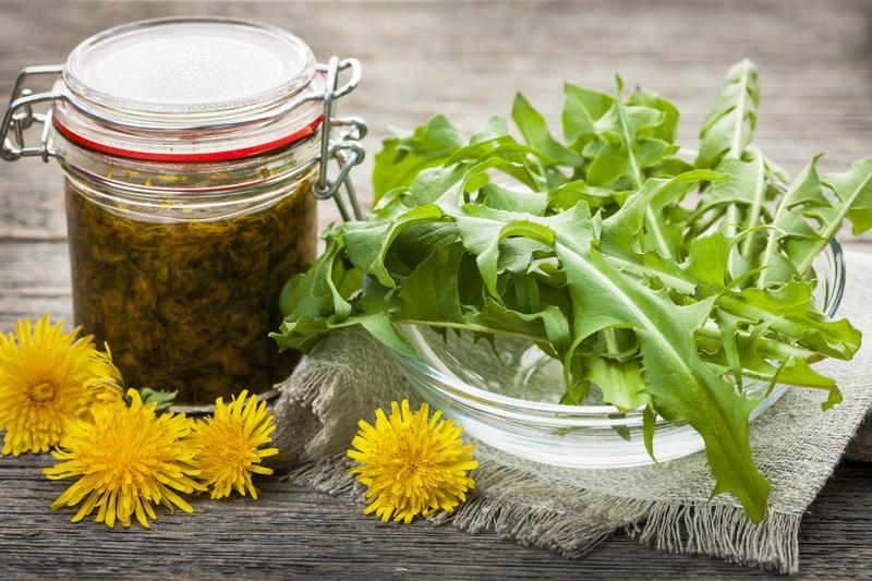 http://www.dreamstime.com/stock-photo-edible-dandelions-dandelion-jam-foraged-flowers-greens-jar-preserve-image36832160