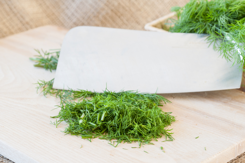 http://www.dreamstime.com/stock-image-fresh-dill-cut-still-life-image-chopped-knife-cutting-board-image41456911