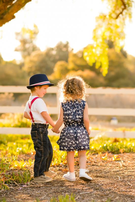 http://www.dreamstime.com/stock-images-children-holding-hands-boy-girl-back-lighting-farm-setting-wearing-red-white-blue-image39342904