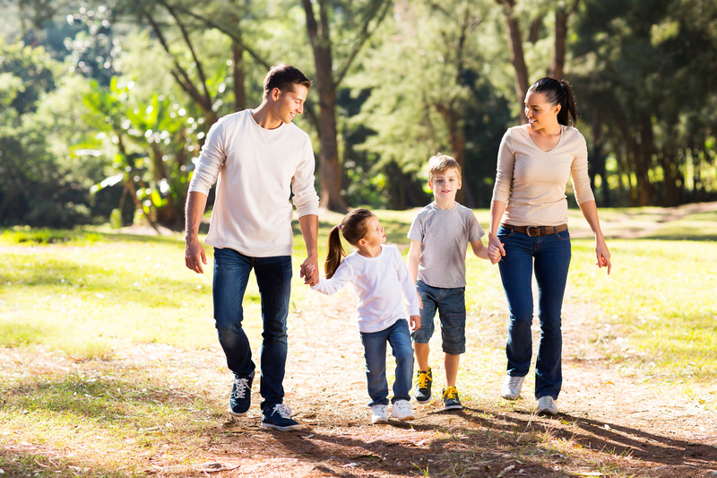 http://www.dreamstime.com/stock-images-family-walking-hand-hand-lovely-young-forest-image41011024