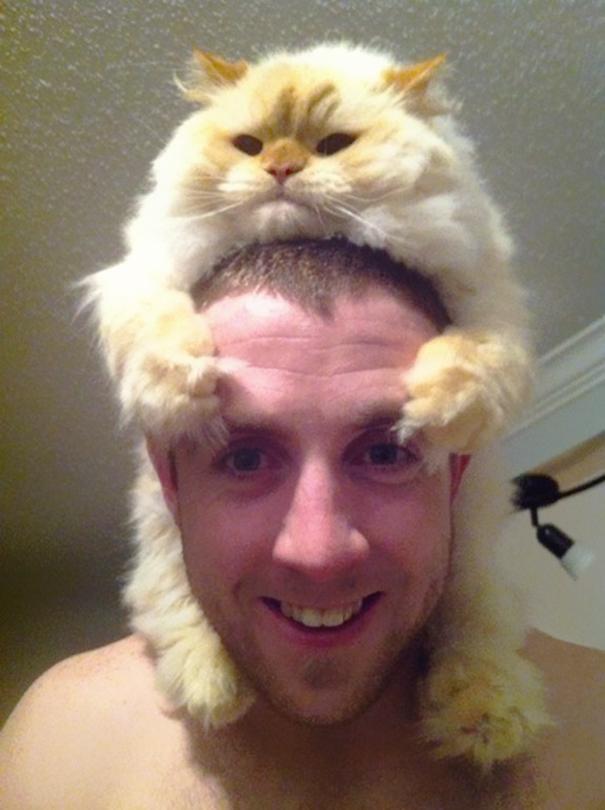 mačka10