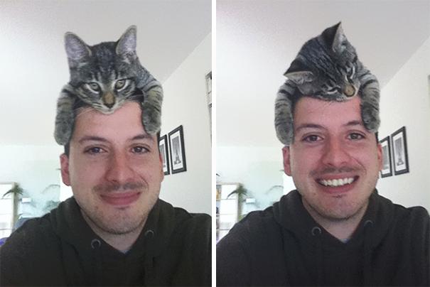 mačka2