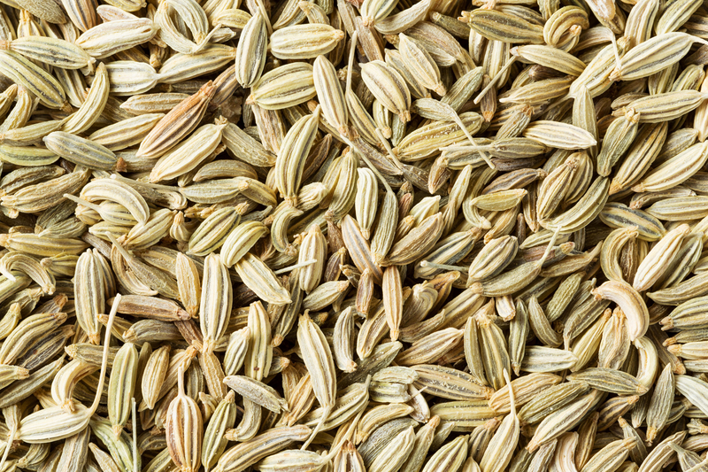 semenke komorača