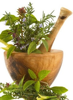 rak biljke2