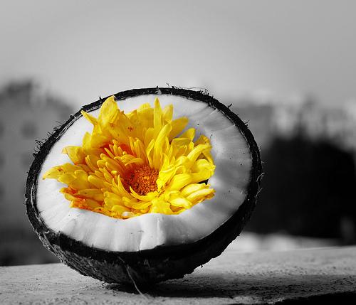 By: Sundaram Ramaswamy