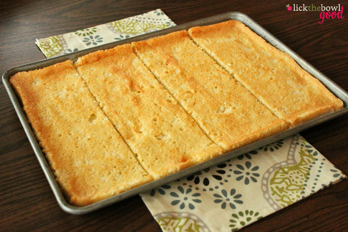 tortica urolana bademi3