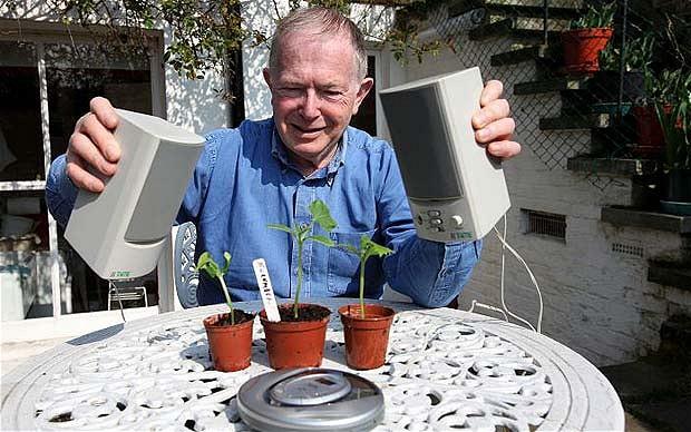 biljke muzika