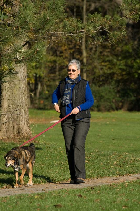 http://www.dreamstime.com/stock-photography-senior-woman-walking-dog-image22255792