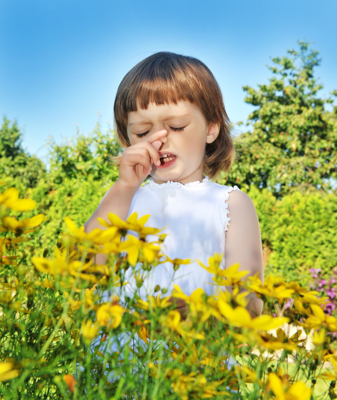 http://www.dreamstime.com/royalty-free-stock-images-pollen-fever-allergy-image15079829