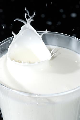 mleko u casi