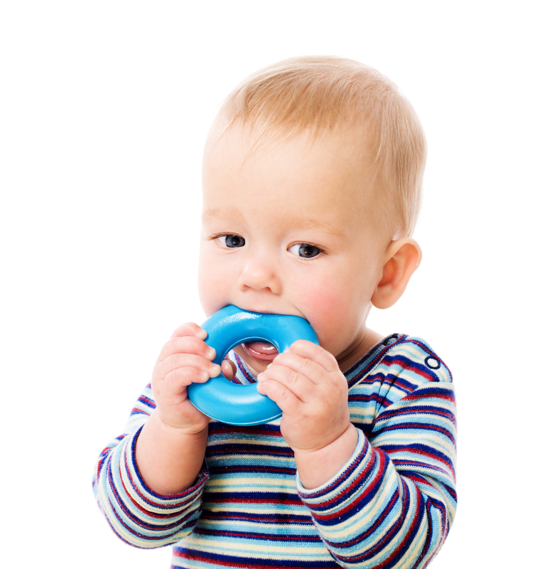 http://www.dreamstime.com/royalty-free-stock-image-baby-chewing-toy-image16023276