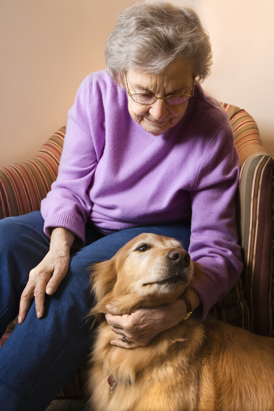 http://www.dreamstime.com/royalty-free-stock-photos-elderly-woman-petting-dog-image2044408